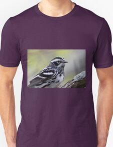 Black-and-white Warbler T-Shirt