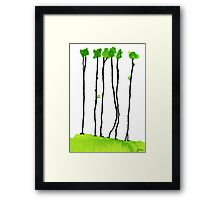 Truly long tree trunks Framed Print
