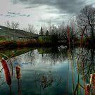 Autumn Landscape by Larry Trupp