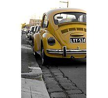 Bumble beetle Photographic Print
