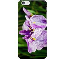 Exotica iPhone Case/Skin