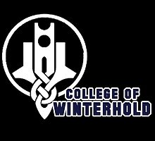 College of Winterhold by CheekySherwin