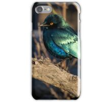 What Beauty iPhone Case/Skin