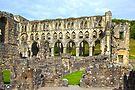 Rievaulx Abbey 2 by Ray Clarke