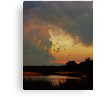 Breathe ( in the Air) Canvas Print