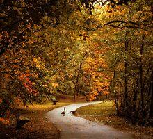 Promenade by Jessica Jenney