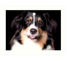 Portrait of a Pet Art Print