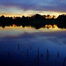 Evening Shadows by Gregory Ballos | gregoryballosphoto.com