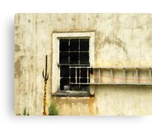 Hidden Window Canvas Print