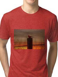 Cardinal at Sunset Tri-blend T-Shirt
