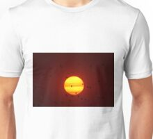 Flying into the Sun Unisex T-Shirt