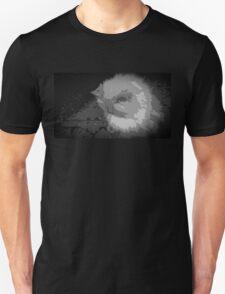 """Shame on Devil Cat"" by Richard F. Yates Unisex T-Shirt"
