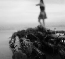 Driftwood by MaryCatherine27