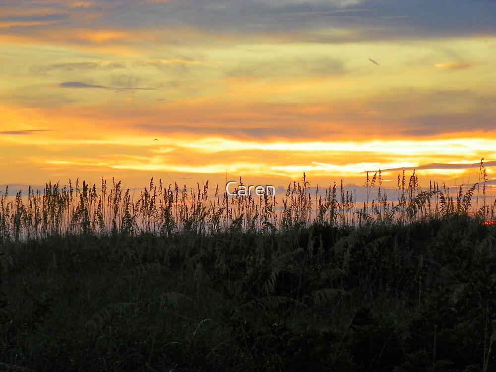 Gulf Coast Sunset by Caren