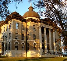 San Marcos Courthouse by Shiva77
