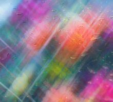 Rainy Day Romance by Robin Webster