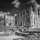 Rievaulx Abbey by Paul McGuire