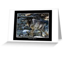 """Vision Quest""  Grey Wolf Greeting Card"