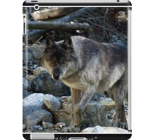 """Vision Quest""  Grey Wolf iPad Case/Skin"