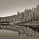Namsen River . Moen . Trondelag . Norway. by Brown Sugar . Views (291) thx! by © Andrzej Goszcz,M.D. Ph.D