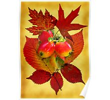 Autumn Leaves & Fruit Poster
