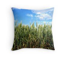 Green Wheat - Mansfield, Washington USA Throw Pillow