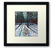 'Into The Woods' Framed Print
