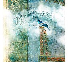 Birdie Darling Photographic Print