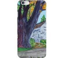 Homestead Colors iPhone Case/Skin