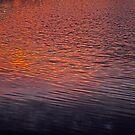 The Crimson Tide by Paul Gitto