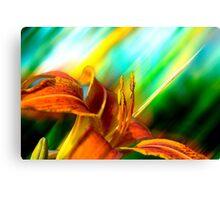 Abstract Orange Tiger Lily Digital Art Canvas Print