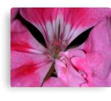 The Center of Life.... Canvas Print