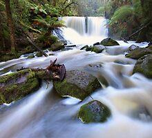 Horseshoe Falls, Tasmania, Australia by Michael Boniwell