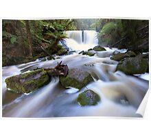 Horseshoe Falls, Tasmania, Australia Poster