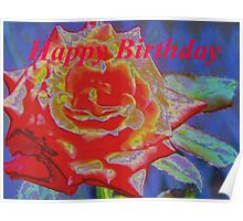 Peachy orange birthday rose Poster