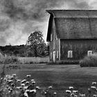 Rural Repose by Brian Gaynor