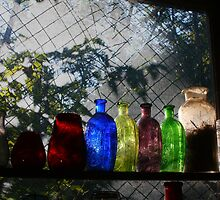 Antique Bottles - Fort Ancient Ohio by Tony Wilder