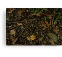 ROOTS Canvas Print