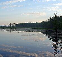 Lake Miccosukee by RebeccaBlackman