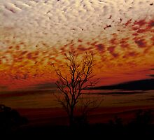 Big Sky by Michelle Ryan