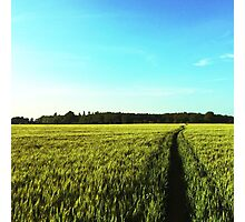 Countryside Run Photographic Print