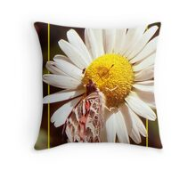 Lovely Wings Throw Pillow