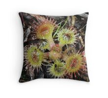 Scarlet Sundew #2 Throw Pillow