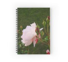 Cottage Rose Spiral Notebook