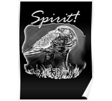 Spirit! Poster