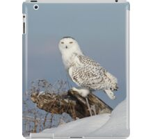 Upon her lookout iPad Case/Skin