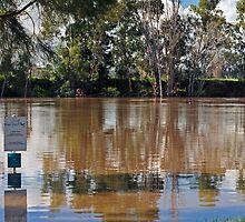 Murrumbidgee Floods by bazcelt