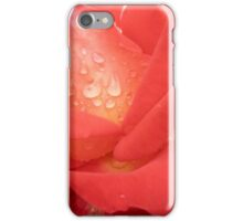 Tequila Sunrise - Red Rose iPhone Case/Skin