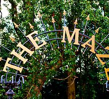 The Maze: Crystal Palace, London, UK. by DonDavisUK
