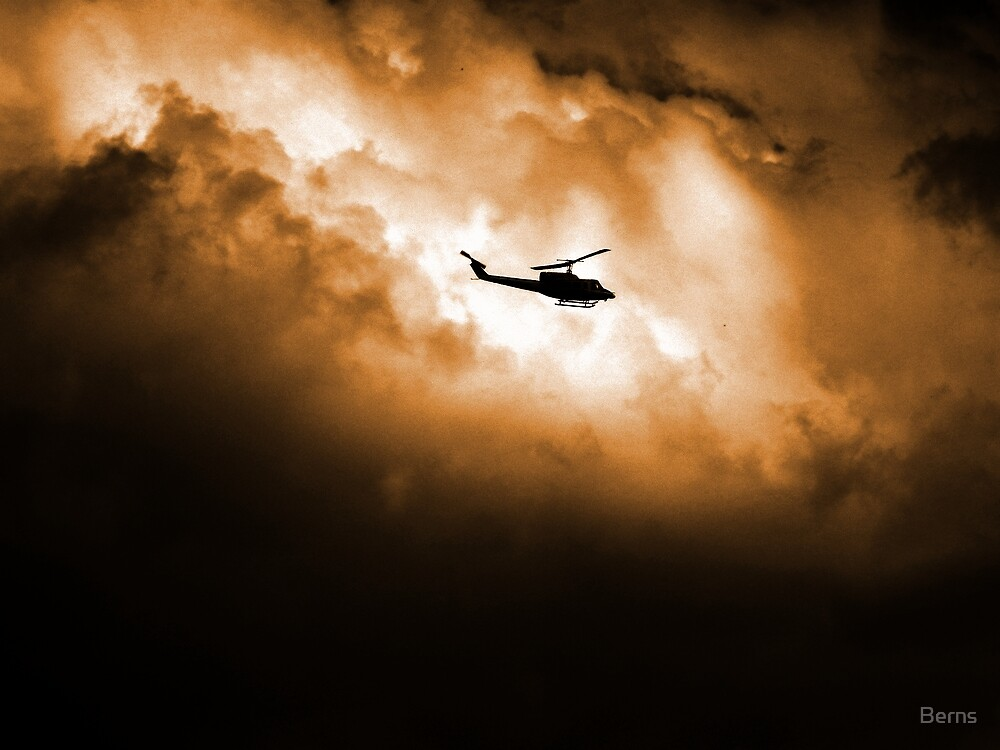Firefighting against all odds. by Berns